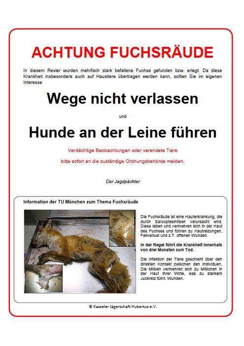 PDF-Vorschau_Fuchsraeude_Kasseler_Jaegerschaft_Hubertus-e-V