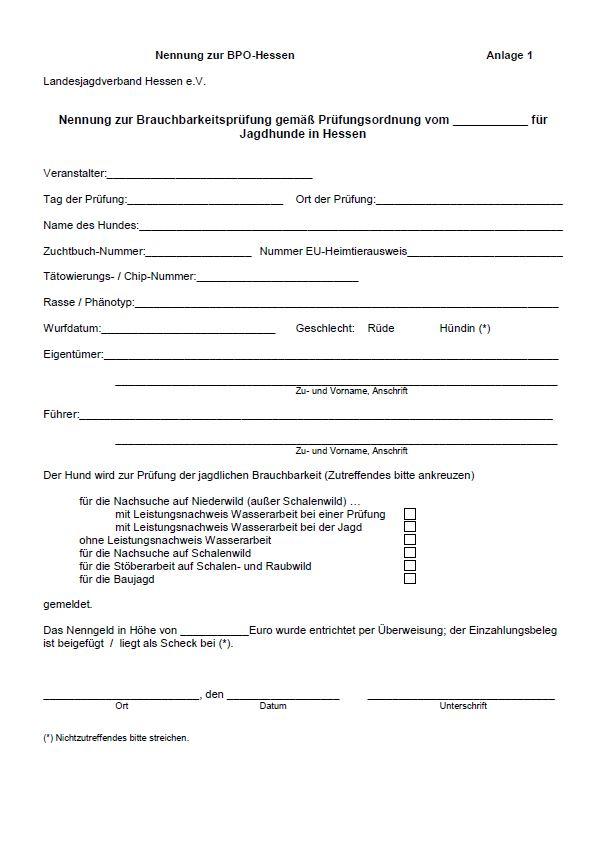 PDF-Vorschau_Nennung_zur_BPO-Hessen